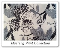 Mustang Print Collection